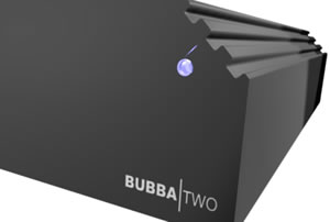 Bubba Two: Silent Server