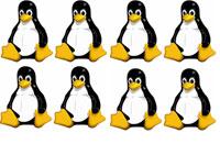 Mobile Linux Use Set To Soar