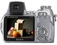 Sony Cyber-shot DSC-H1 5 Megapixel Camera First Impressions