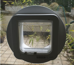 SureFlap Review: The RFID Catflap